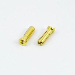 Prises PK 5.0mm males (2) -...